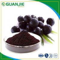 Quality Acai Berry Powder Extract Factory Supply Free Sample with Reasonable Price wholesale