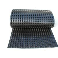 China Dimple drainage board HDPE dimple drainage board on sale