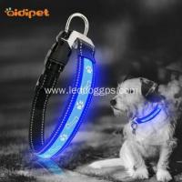 Quality LED Dog Collar Fashion Pretty Rechargeable Led Light Up Dog Collar wholesale
