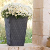 Quality New rattan garbage cushion box OMR-A017 wholesale