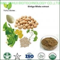 China ginkgo biloba extract,flavonoids ginkgo biloba extracts,ginkgo biloba extract powder on sale