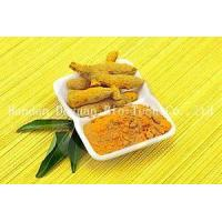 Quality 95% Ginger Extraction/Turmeric Oleoresin/Curcumin wholesale