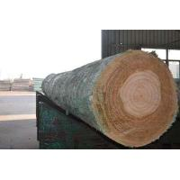 Cheap knot-free log for sale