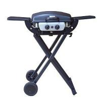 Outdoor Gas Grill BGG02