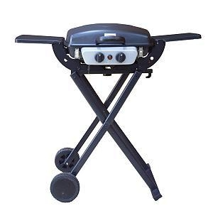 Cheap Outdoor Gas Grill BGG02 for sale