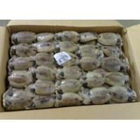 Buy cheap Cuttelfish from wholesalers