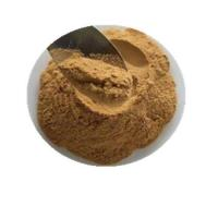 Quality Organic Skullcap Root Extract wholesale