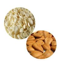 Quality Apricot Kernel wholesale