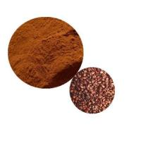 Quality Grape Seed Extract Powders wholesale