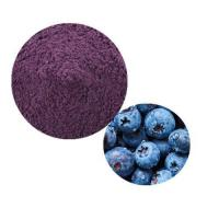 Quality Blueberry Powder wholesale
