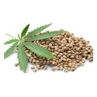 Quality Organic Hemp Seed wholesale
