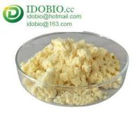 China High Pure Organic Ginger Extract Powder on sale