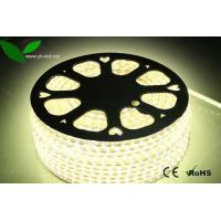 5050 SMD 60WW LED/M 110V high voltage strip