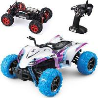 China Remote Control Car S913 on sale
