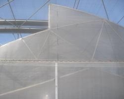 China Saw-Tooth Fixed Roof Greenhouse
