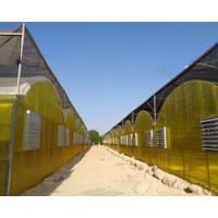 Buy cheap Corrugated Polycarbonate Greenhouse from wholesalers