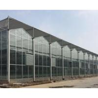 Buy cheap Venlo-Glass Greenhouse from wholesalers