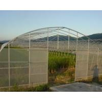 Buy cheap Single Tunnel Greenhouse from wholesalers