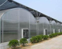 China Double Inflation Film Greenhouse