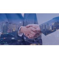Buy cheap  flexible organization open llc in delaware for foreign investors from wholesalers